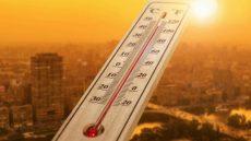 Recomendaciones y consejos ante una ola de calor