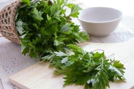 Remedios naturales con artemisa
