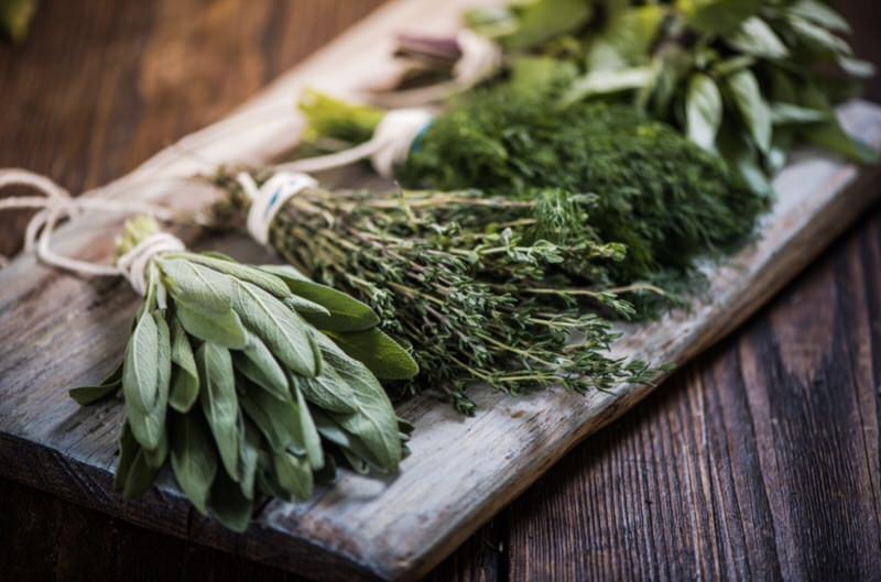 Cómo secar plantas y hierbas medicinales
