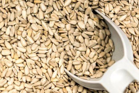 Semillas de girasol: beneficios y propiedades nutritivas