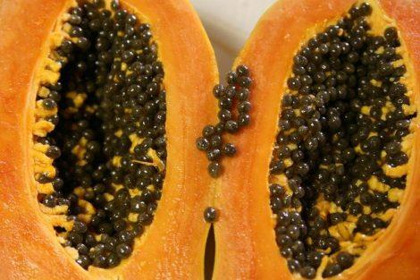 Semillas de papaya: beneficios y propiedades