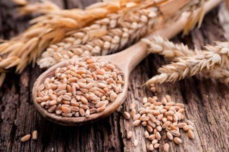 Las ventajas y beneficios de comer pan de grano completo