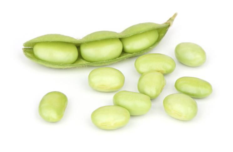 Soja proteinas