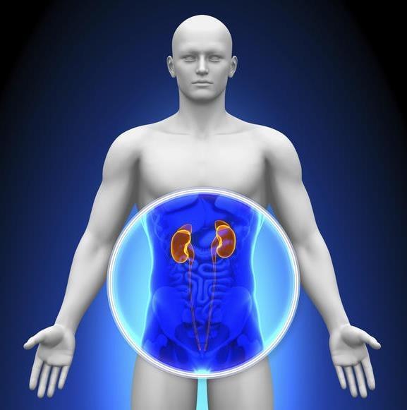 que es bueno para bajar el acido urico en la sangre dolor segundo metatarsiano acido urico acido urico normal en la mujer