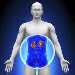 ¿Qué es el filtrado glomerular o tasa de filtración glomerular y para qué sirve?