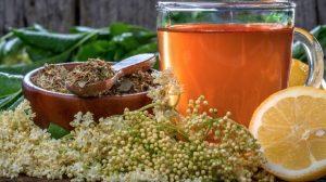 Receta de té de saúco