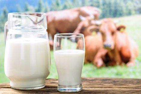 Tipos y variedades de leche