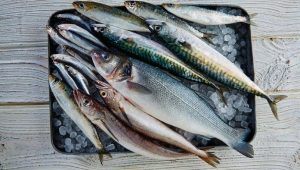 Pescado azul: tipos, beneficios e información nutricional