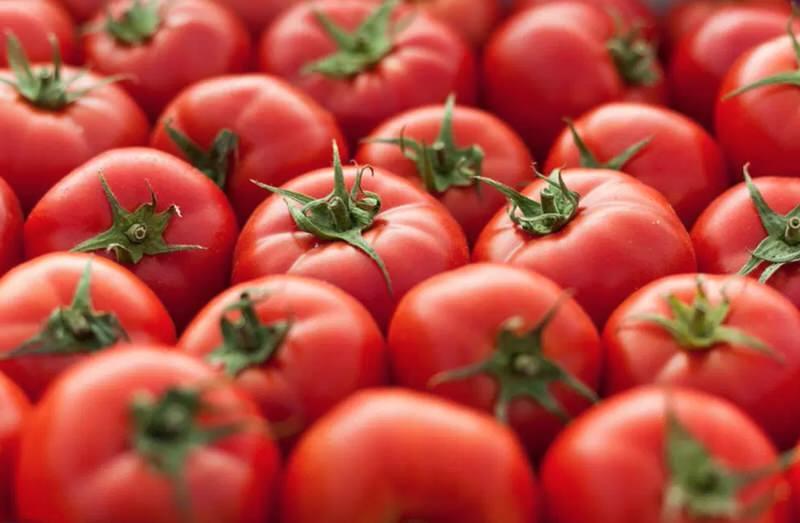 Beneficios del tomate rico en licopeno