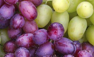 Las uvas son muy buenas para la visión y la vista